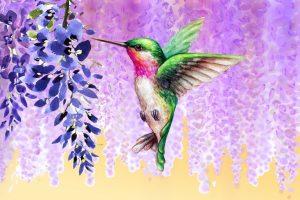 Wisteria Humming Bird Dream Art Sherpa